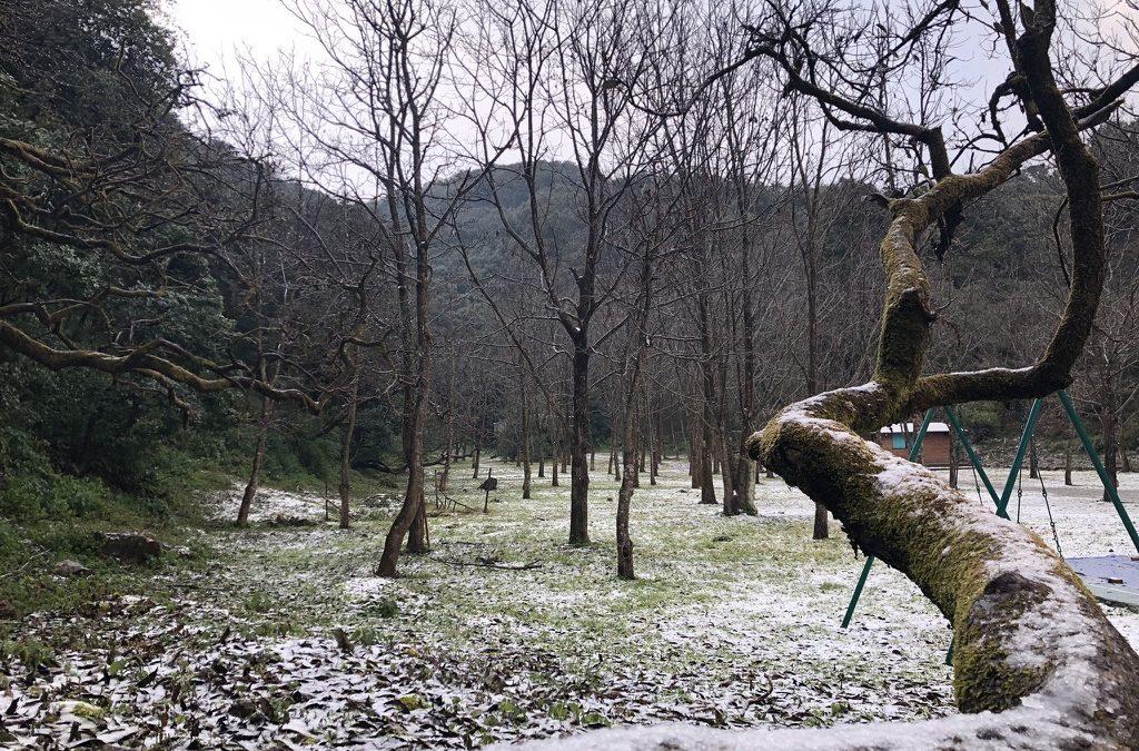 Snow Season at Dolina Retreat, Mussoorie.